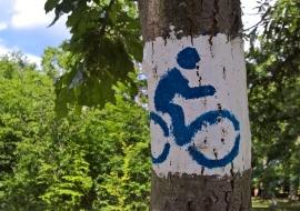 Erdei kerékpárút a Mátrában